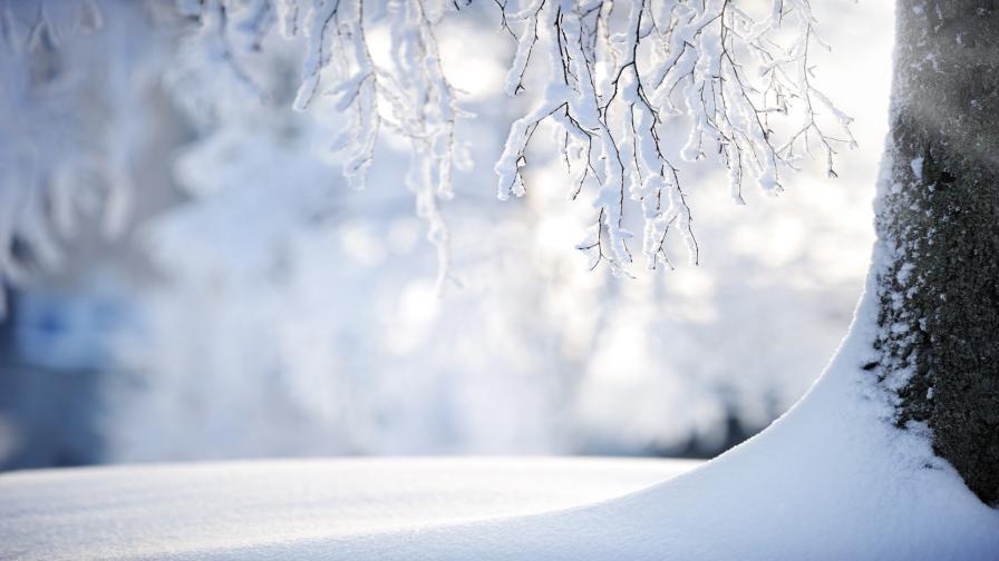 <p><strong>Зимата</strong> се завърна с пълна сила, <strong>проблеми по пътищата</strong></p>