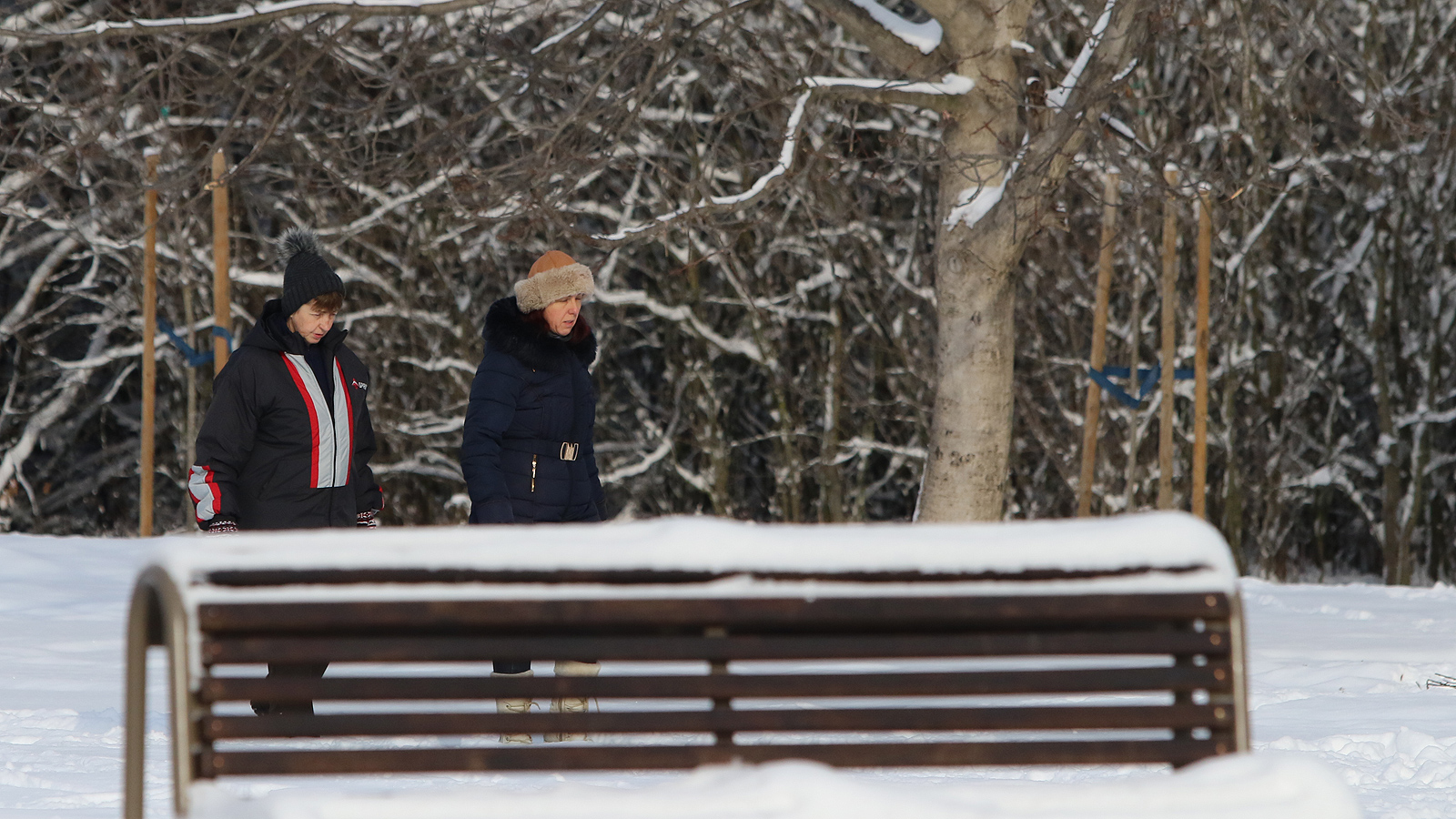 Зимна разходка в Северния парк, София