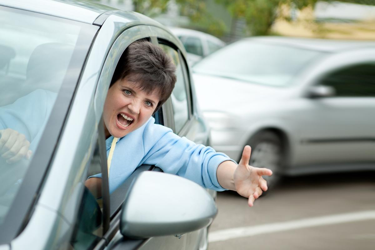 """Овен. Ето това е истинската буря на пътя. Всички карат бавно, никой не е достатъчно добър, а когато ви настигнат - скандалът ви е в кърпа вързан. Ако пътувате с тях - слушайте мантри и повтаряйте на ум """"ОМ"""", защото... защото нямате друг избор. Овен в колата."""