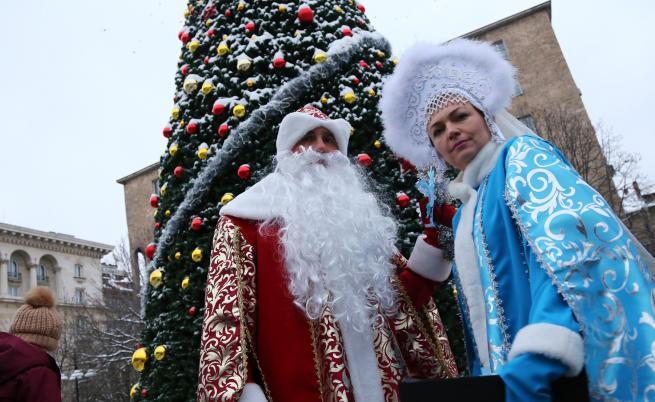 Москва подари 13-метрова елха на София (СНИМКИ)