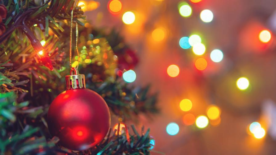 GENERALI мечтае за зелена Коледа и устойчиво бъдеще