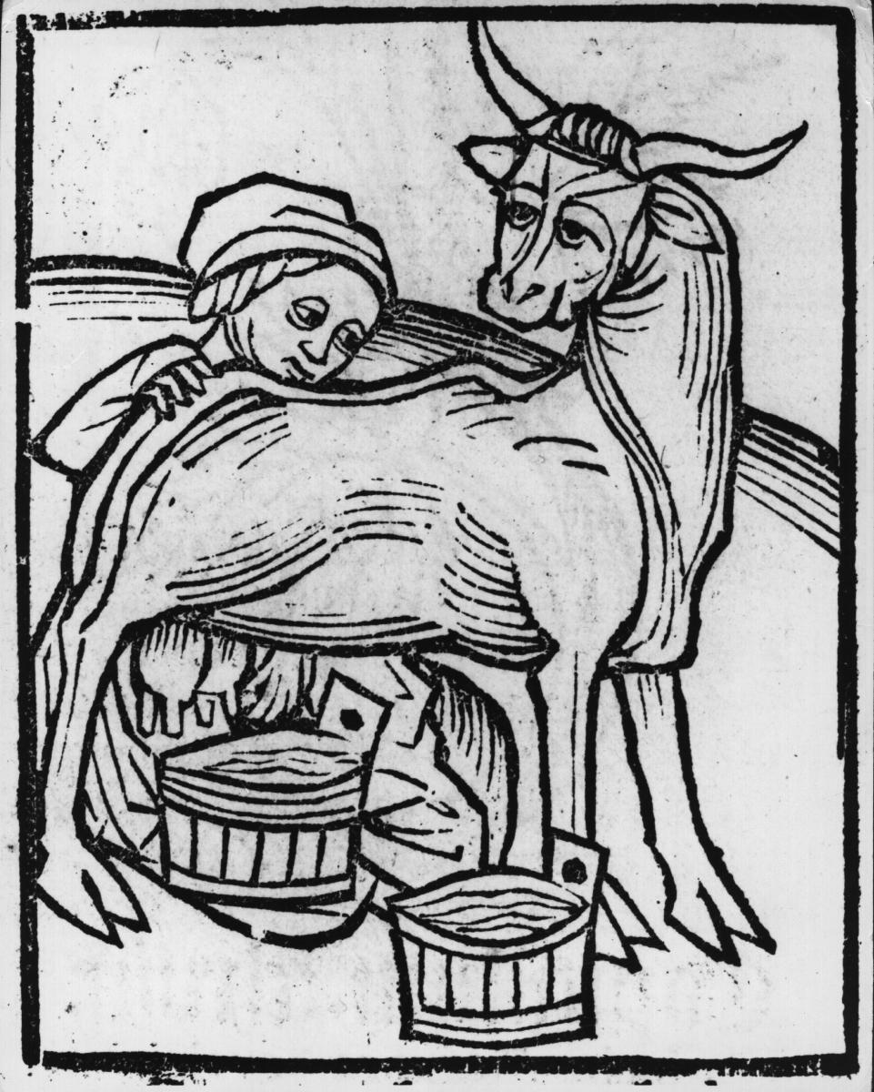 Колкото и странно да звучи, млякото е много основна съставка в средновековните рецепти. Само че - не животинското, а бадемовото. То е било предпочитано, защото е можело да се използва по време на пости.