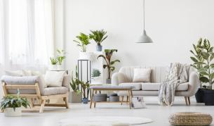 Гардения, жасмин, орхидея – сладки сънища