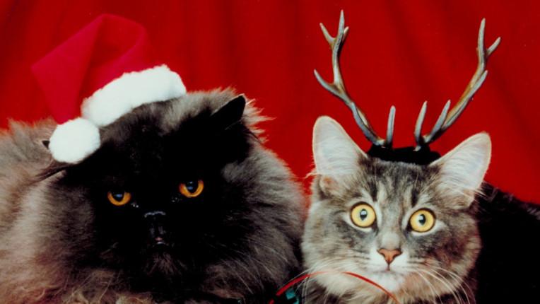 Клишетата по Коледа, които все пак обичаме