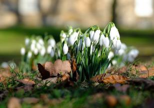 Последен пролетен ден за седмицата