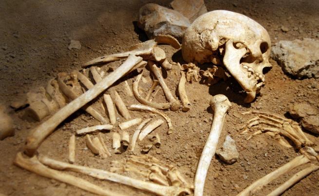 Викингският скелет, превърнал се в ябълка на раздора