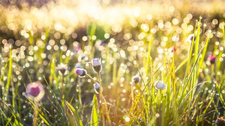 Климатолог прогнозира какво ще е лятото в България