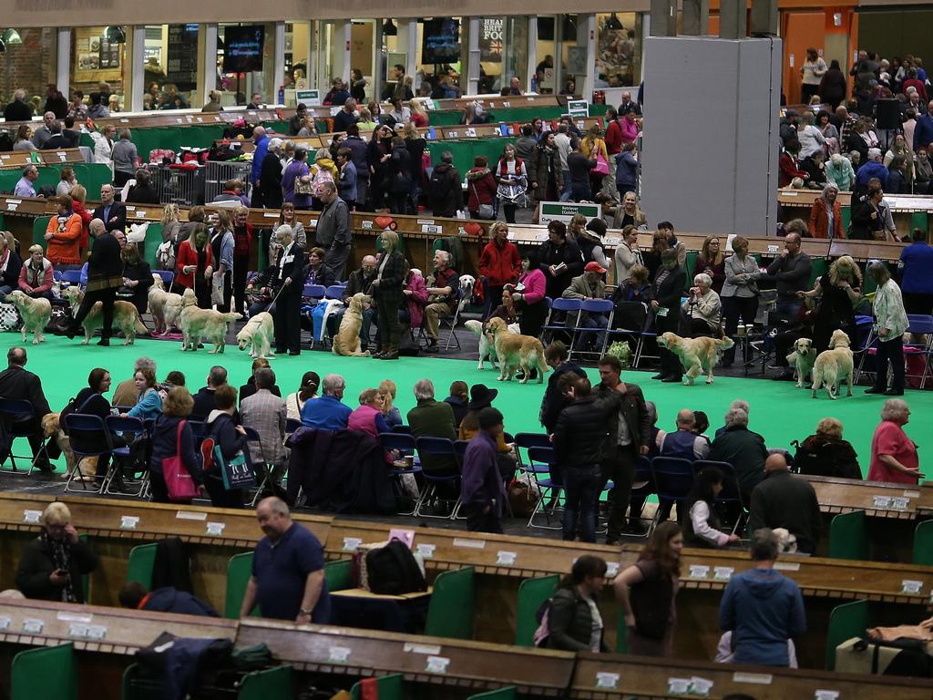 Събитието се организира от Кенъл клуб Великобритания и се провежда в рамките на четири дни (от четвъртък до неделя) в началото на март в Националния изложбен център (NEC) в Бирмингам, Англия.