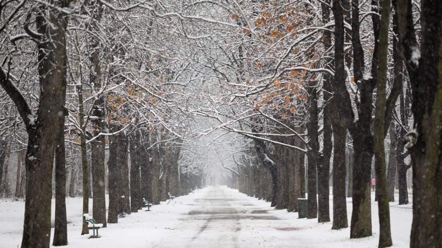 <p>Очакват ни <strong>дъжд и сняг</strong>, завръща ли се зимата</p>