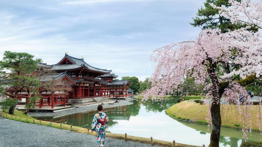 Красотата на пролетта в Япония