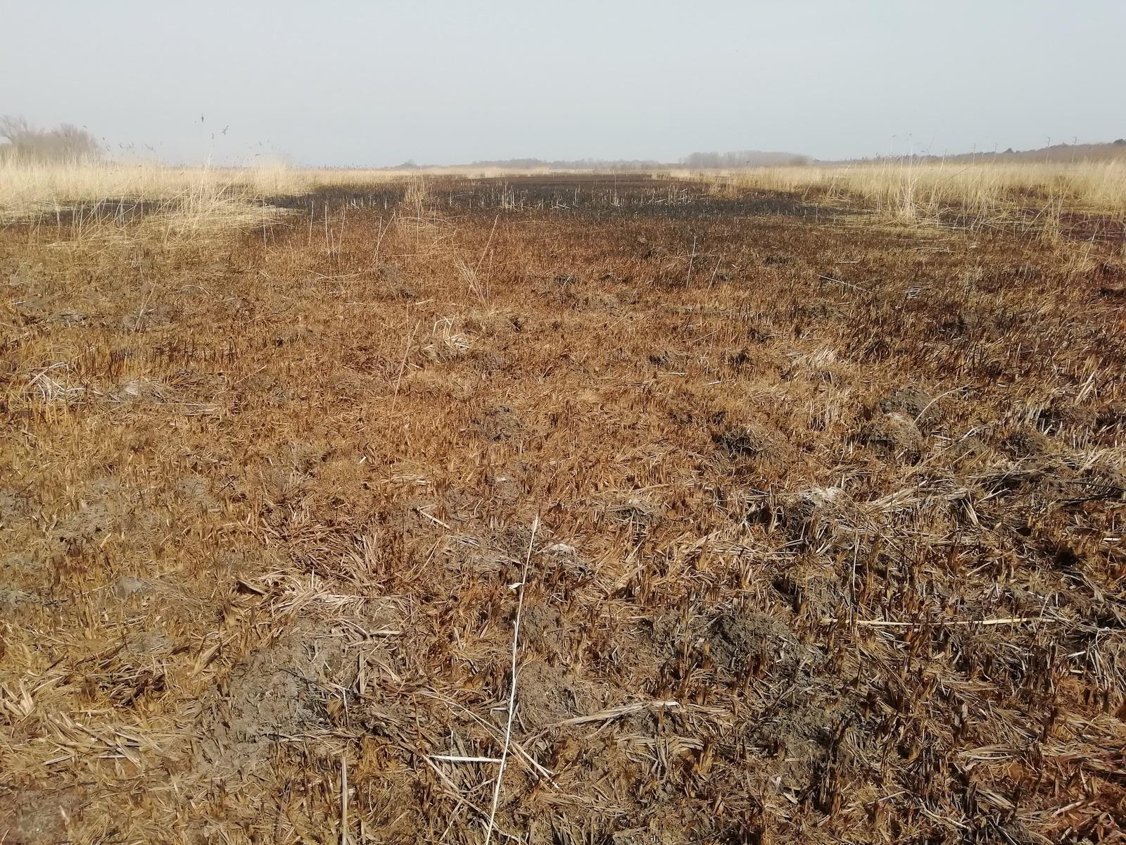 Министърът на околната среда и водите Нено Димов направи проверка на защитената местност