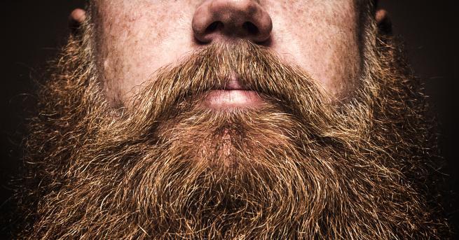 Снимка: В мъжката брада има повече бактерии отколкото в кучешката козина