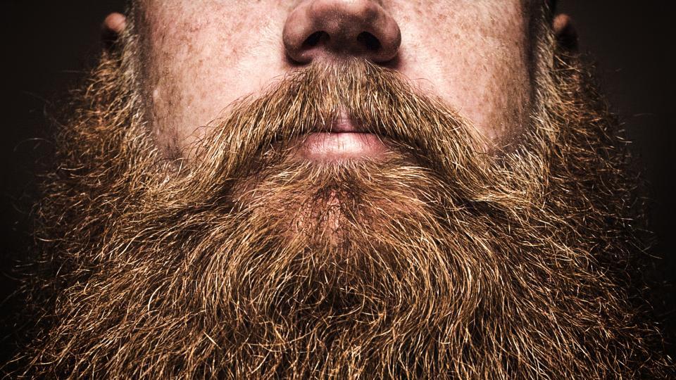В мъжката брада има повече бактерии отколкото в кучешката козина