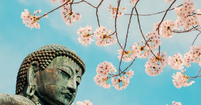 Снимка: Свещеният бийт на Буда