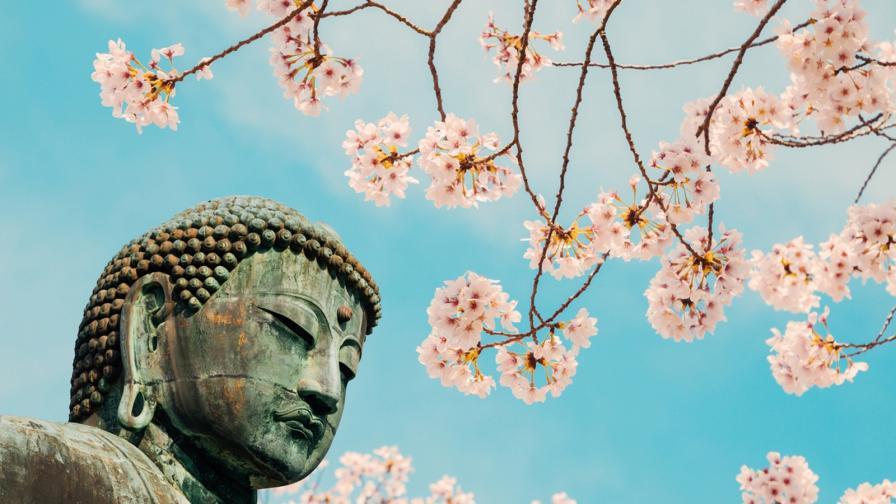 <p>Свещеният бийт на Буда</p>