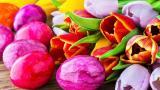 <p>Идеи за боядисване на яйцата, с които ще <strong>изненадате</strong></p>