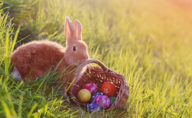 Как зодиите празнуват Великден