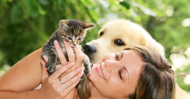 Любопитно Искам да си взема куче... или пък котка Ето