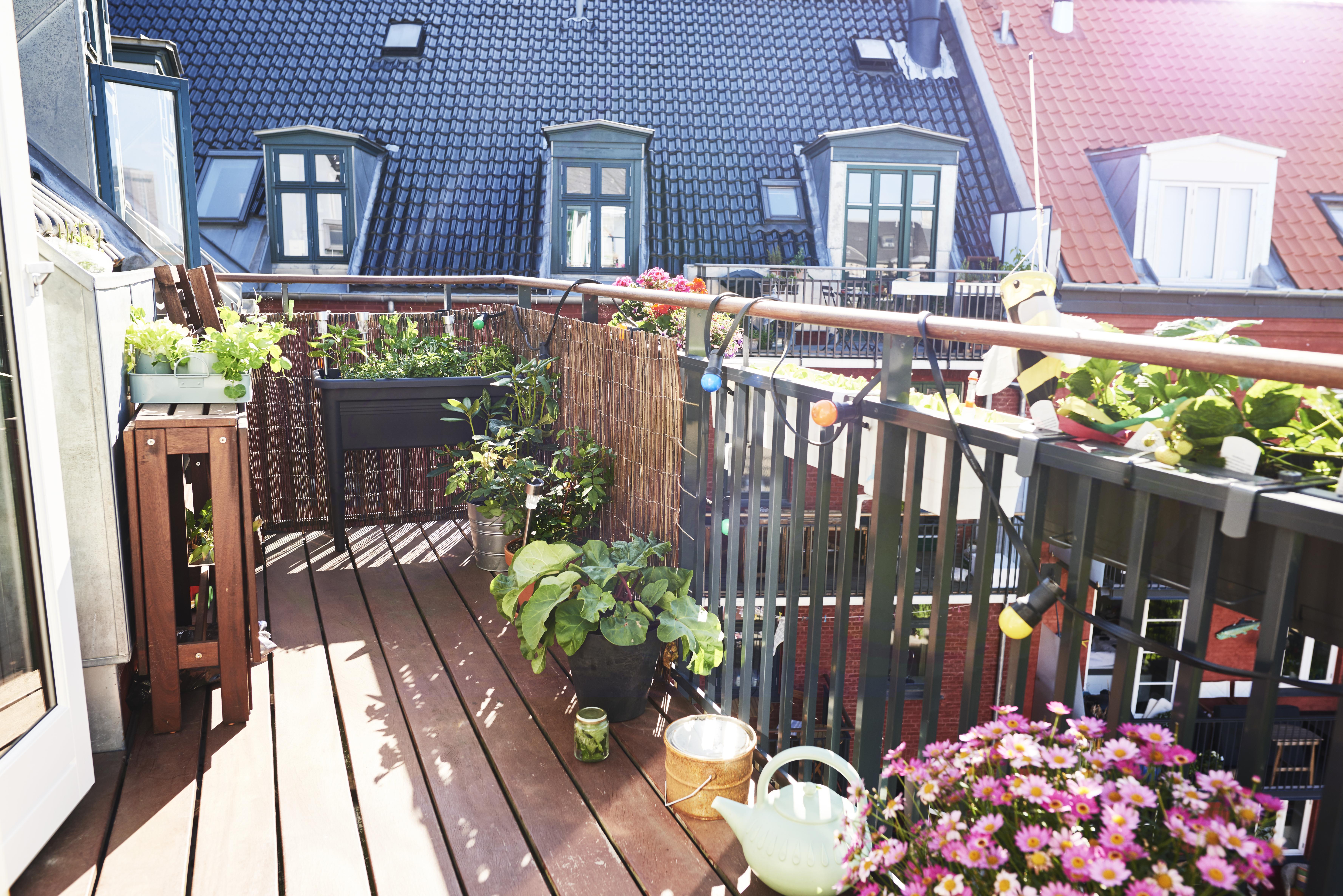 При еднофамилни къщи градината винаги се счита за част от жилището, освен ако в договора за наем не е посочено друго. При многофамилните сгради е точно обратното: наемателите могат да използват градината като част от жилището единствено с изрична клауза в договора.