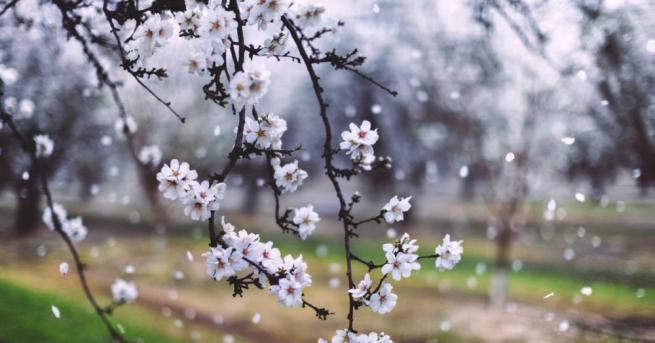 България Вятърът утихва, температури около 20° Следващите дни времето ще