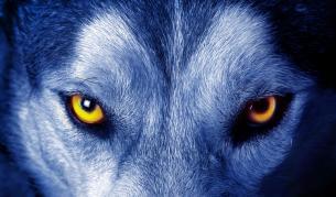 <p>Да те <strong>погледнат</strong> със <strong>зли очи </strong>- откъде идва и <strong>какво означава</strong></p>