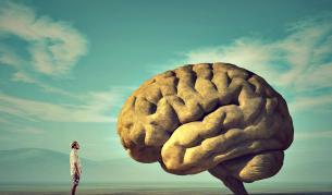 <p><strong>Затлъстяването</strong> е свързано със <strong>смаляване на мозъка</strong></p>