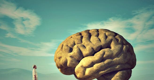 Любопитно Затлъстяването е свързано със смаляване на мозъка До това