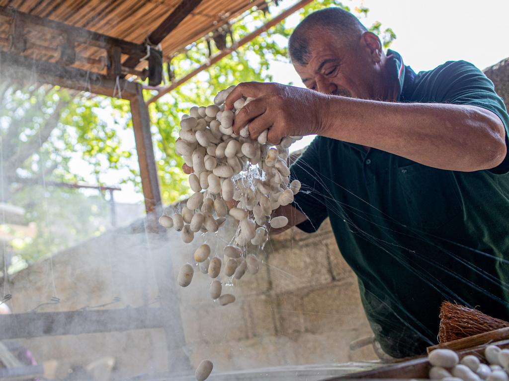 След това пашкулите се варят с вода и пепел, за да може копринената нишка да се разложи.
