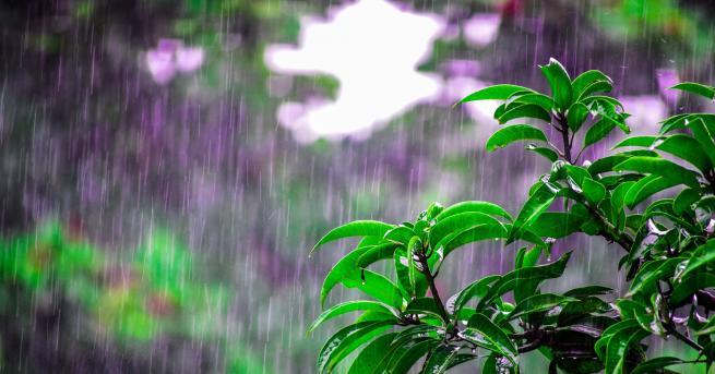България Щети в Девин и Русенско след поройните дъждове В
