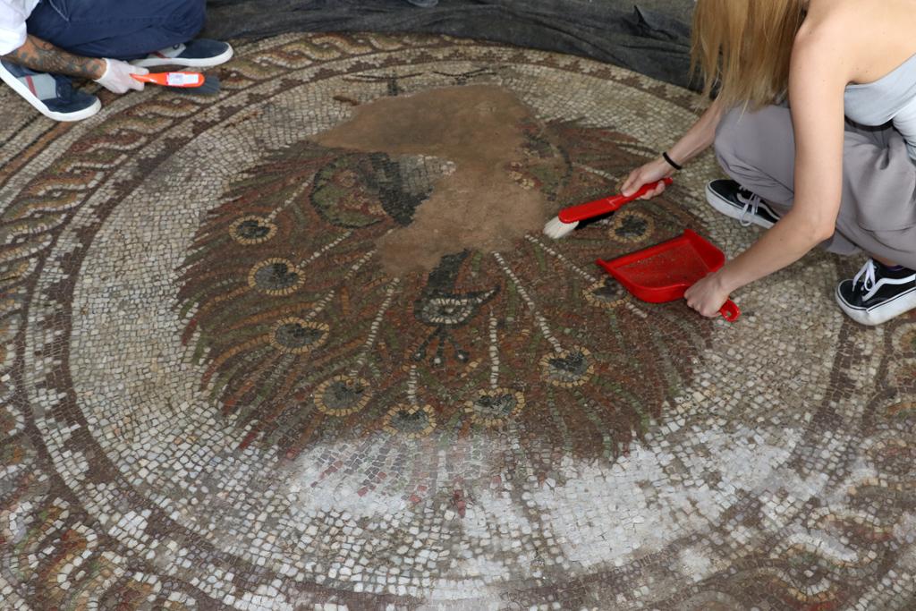 Посланици от 19 държави, заедно с кмета на Пловдив Иван Тотев почистиха с четки една от емблематичните мозайки на Епископската базилика на Филипопол.