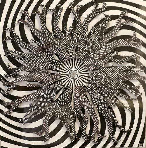 Като елиминират изцяло цветната палитра, творбите генерират абстрактен и графичен, почти кино ефект. По време на пътуванията си художничката продължава да изследва безкрайните възможности на черното и бялото, като се концентрира върху композицията и формата, върху сянката и светлината.