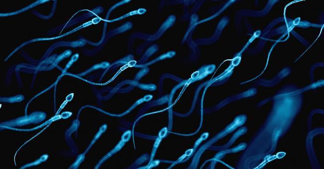 Технологии Мъжете астронавти може да бъдат сменени от спермални банки