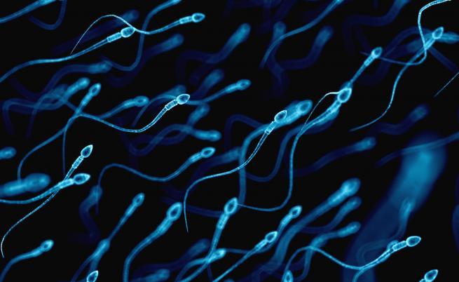 Мъжете астронавти може да бъдат сменени от спермални банки