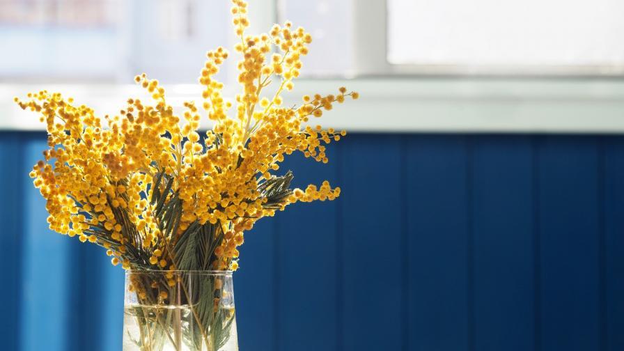 цветя празник имен ден