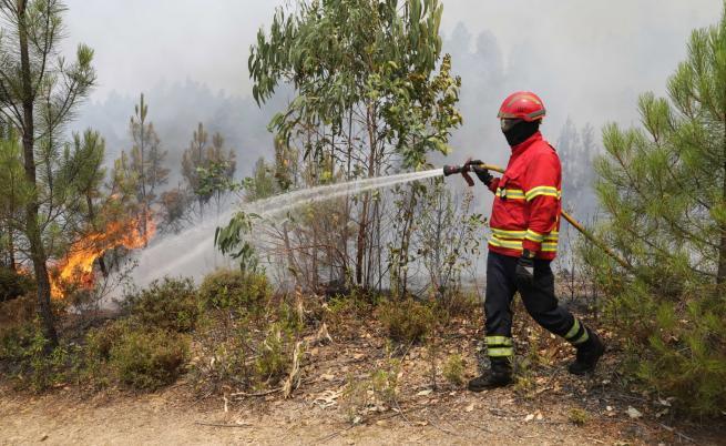 Хиляда пожарникари се борят с пожари в Португалия