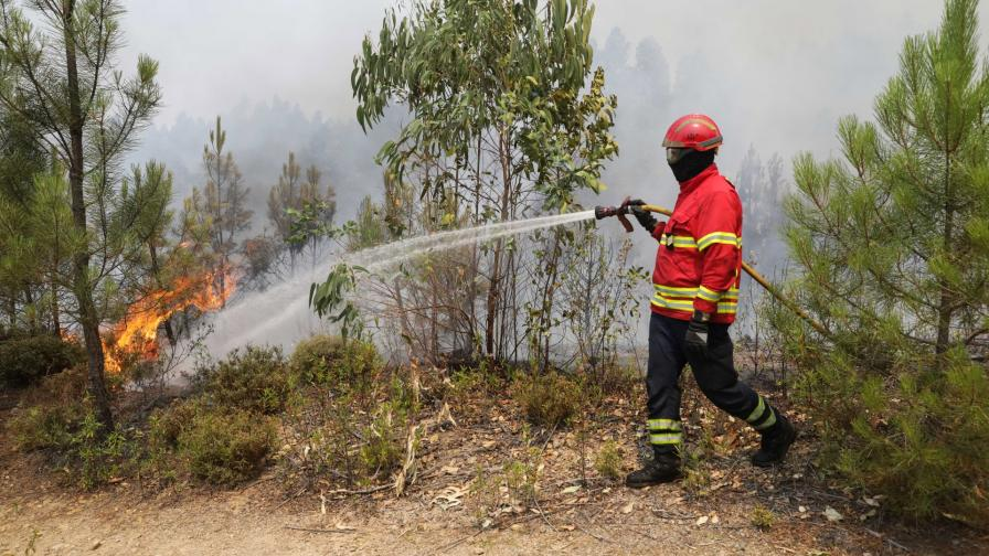 <p>Хиляда пожарникари се борят с пожари в Португалия</p>