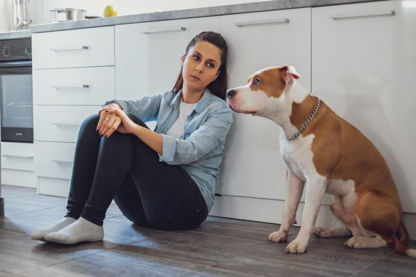 <p><strong>Възможно ли е кучетата да се чувстват самотни?</strong></p>  <p>Отговорът е прост: Да, кучето ви&nbsp;може&nbsp;да се почувства&nbsp;самотно, така че се замислете как можете да подобрите условията му&nbsp;на живот.&nbsp;</p>