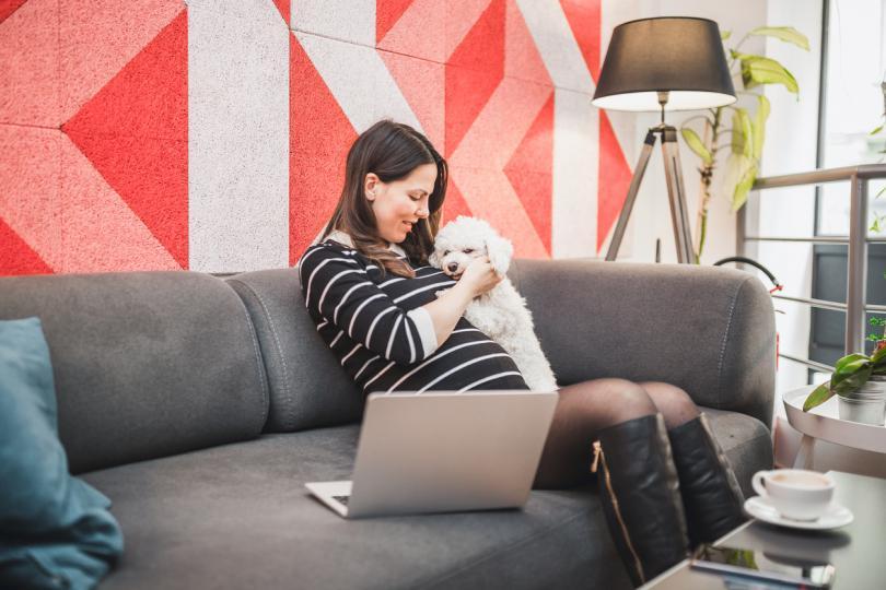 <p>Възможно е кучето да разбере, че предстои да станеш майка, още преди да видиш двете черти върху теста за бременност. Тези животни са много сензитивни и веднага забелязват дори дребните физиологични проблеми.</p>