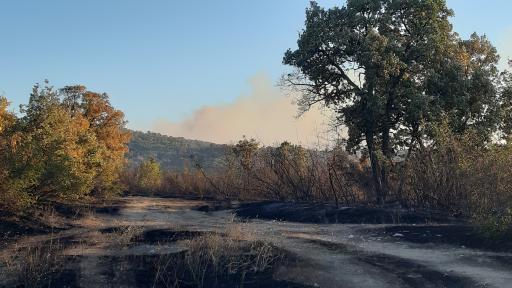 Гори горски пожар около три Хасковски села