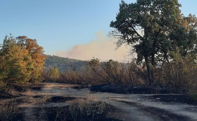 8000 декара горят в Хасковско, половината са гори