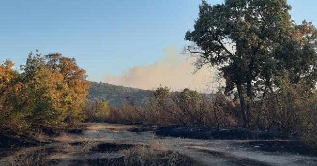 България Пожарът в Хасково – дело на психично болен всички