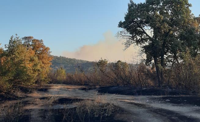 Пожарът в Хасково – дело на психично болен
