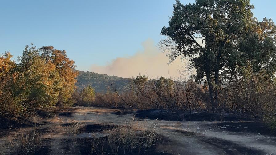 Пожарът в Хасково