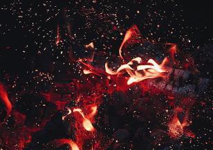 Пожарът край Свищов продължава да тлее