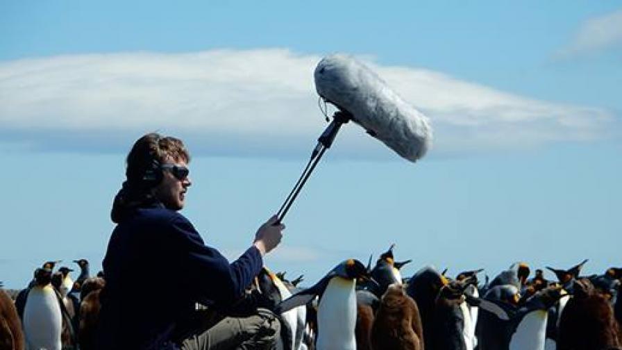 Жулиен Готие записва звуци в природата