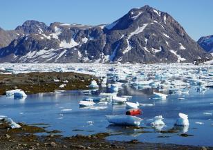 Гренландия се топи, какво ни очаква
