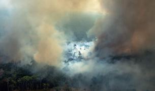 Амазония гори и е по-ужасно отпреди - Теми в развитие | Vesti.bg