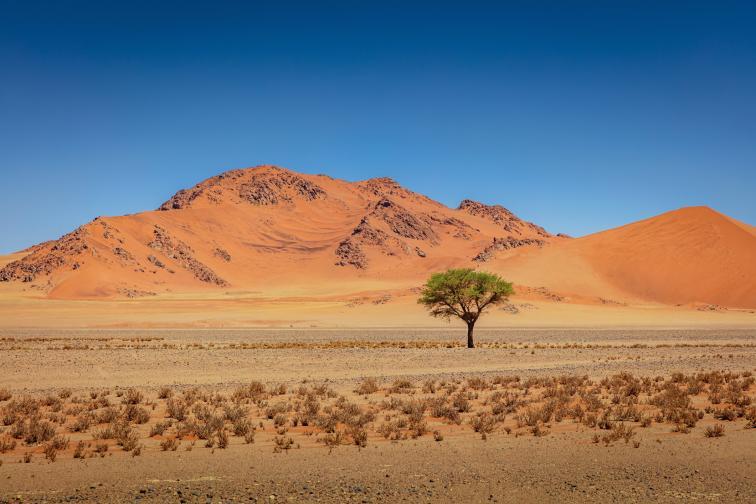 Намиб пустиня