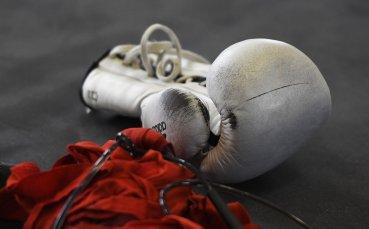 Сестрата на починалия роден боксьор се съмнява, че е убит
