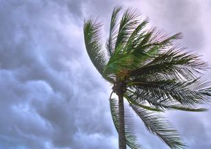 Тропическата буря Умберто прерасна в ураган